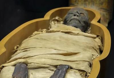 Мумия (фильм, 1959) — википедия. что такое мумия (фильм, 1959)
