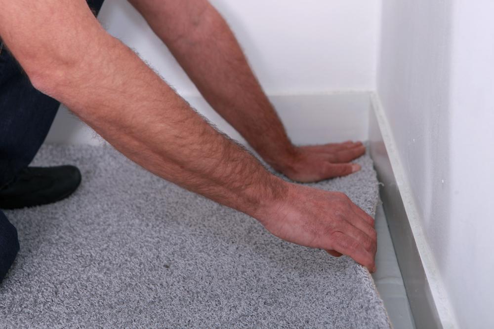 Какой ковролин лучше для дома – виды и особенности коврового покрытия
