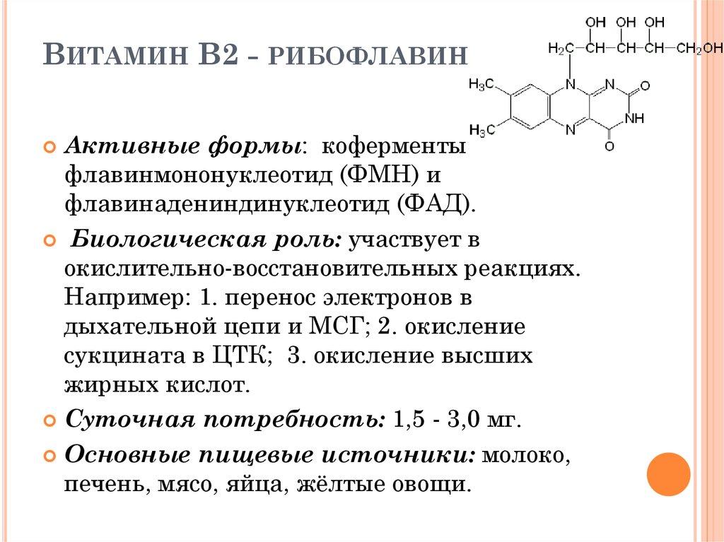 Витамин b2 рибофлавин. описание, свойства. влияние на организм человека