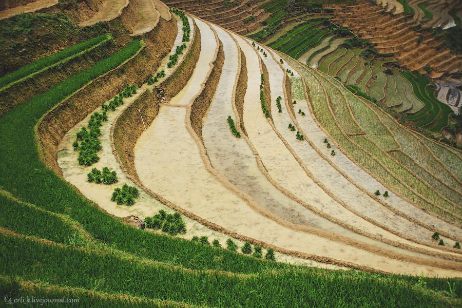 Земледелие — википедия с видео // wiki 2