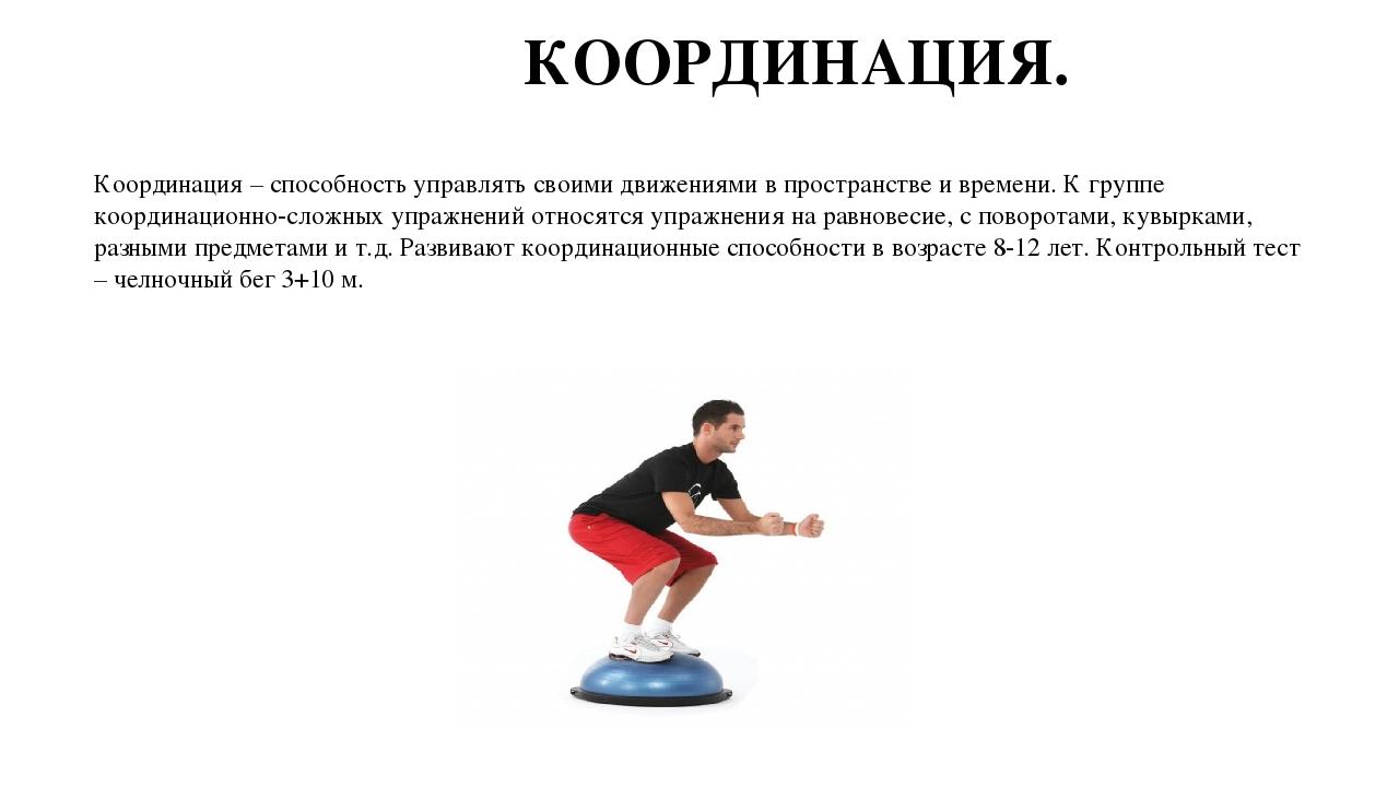 Физические качества человека: быстрота, ловкость, сила, гибкость и выносливость