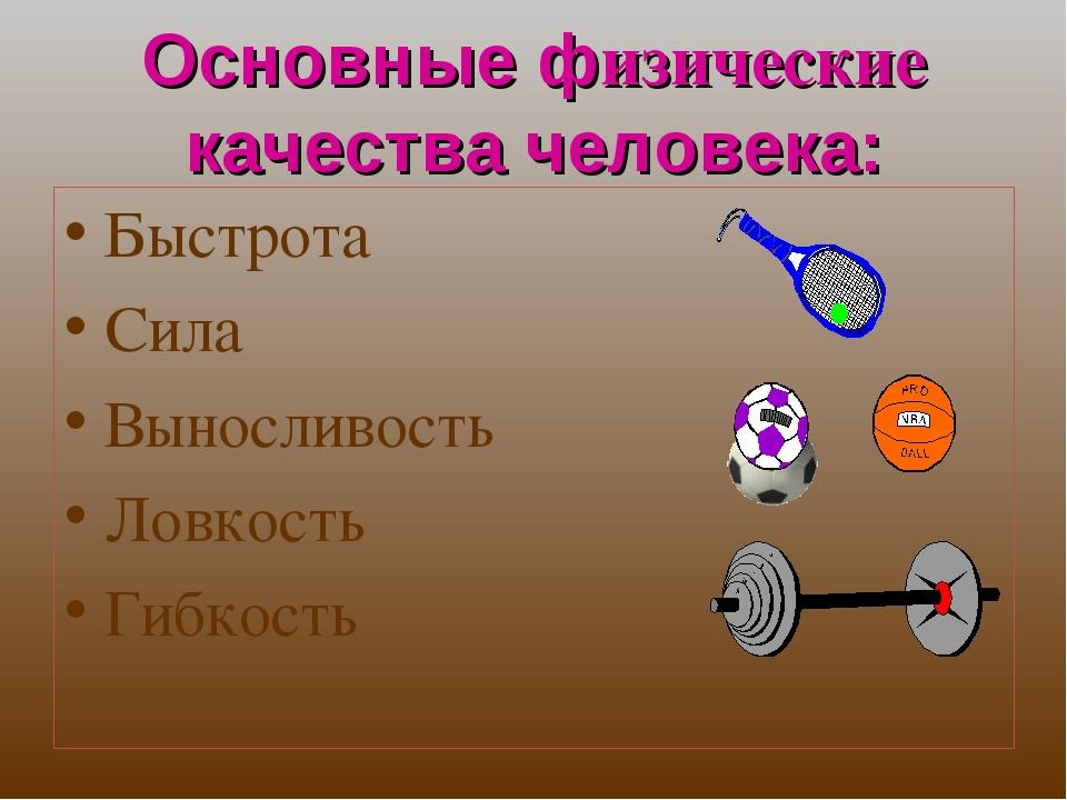 Читать книгу основы силовой подготовки в спорте анатолия бондарчука : онлайн чтение - страница 1
