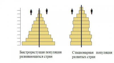 Половозрастной состав населения. конспект по географии - учительpro