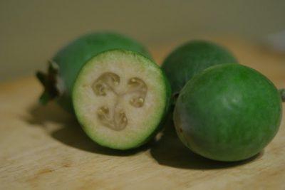 Полезнали фейхоа: лечебные свойства и противопоказания зеленых плодов