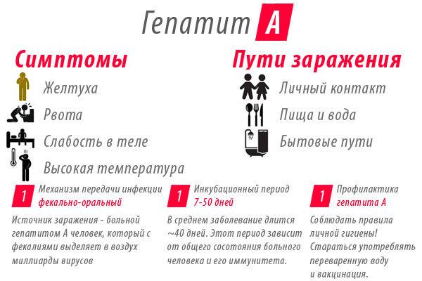 Тимоловая проба: норма у мужчин и женщин в крови, расшифровка анализа и основы метода, диагностика и лечение