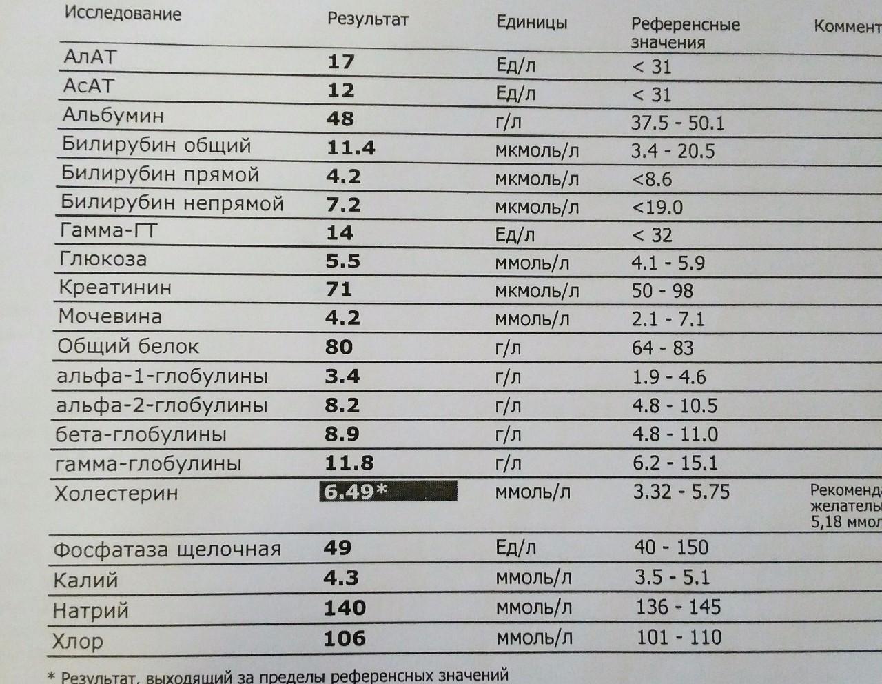 Общий белок в крови повышенный