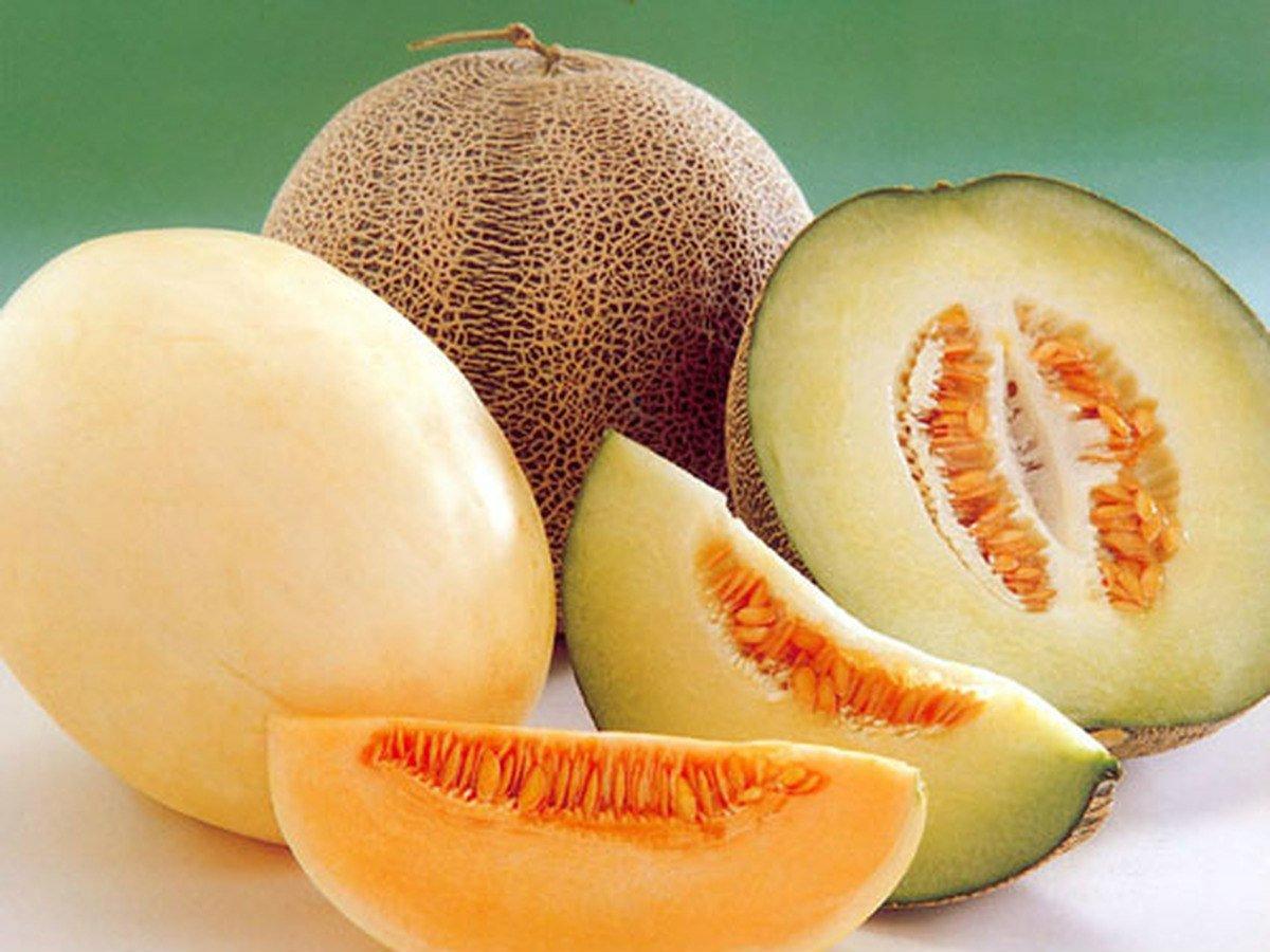 Что такое дыня: фрукт, ягода или овощ?