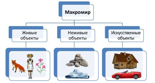 """Что такое природа? живая и неживая природа. значение и разбор слова """"природа"""" :: syl.ru"""