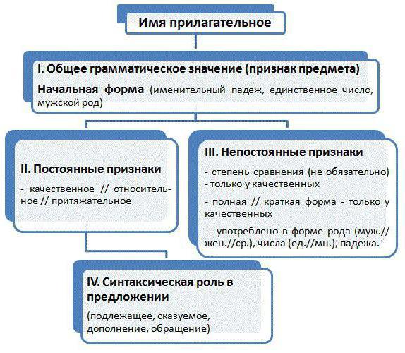 Синтаксическая роль в предложении