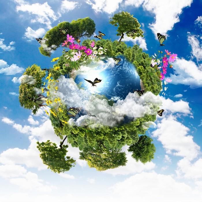 Экология — википедия. что такое экология
