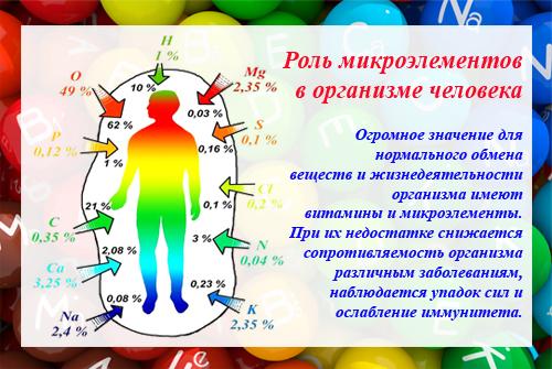 Что такое микроэлементы, их роль в организме человека, список