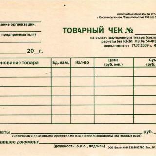 Электронный чек: его задачи и применение