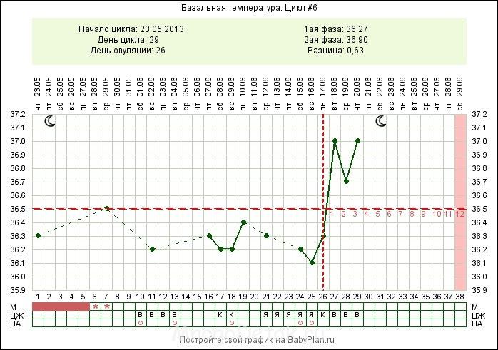 Базальная температура при овуляции: как правильно измерить и построить график