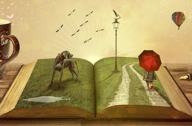 Виды художественной литературы