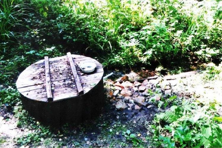 Ключевая беда: чистота родниковой воды оказалась мифом   статьи   известия
