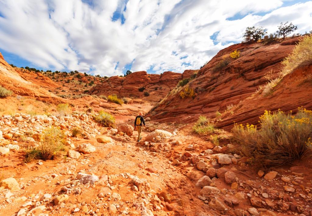 Что такое опустынивание?