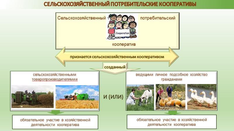 Что такое кооперация