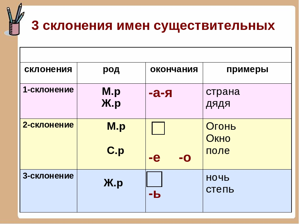 Склонение по падежам слов в русском языке - правила и типы