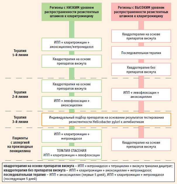 Эрадикация helicobacter pylori: схемы лечения и методы диагностики