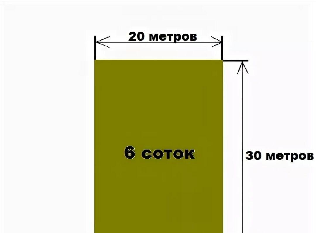 Что такое 1 сотка участка земли