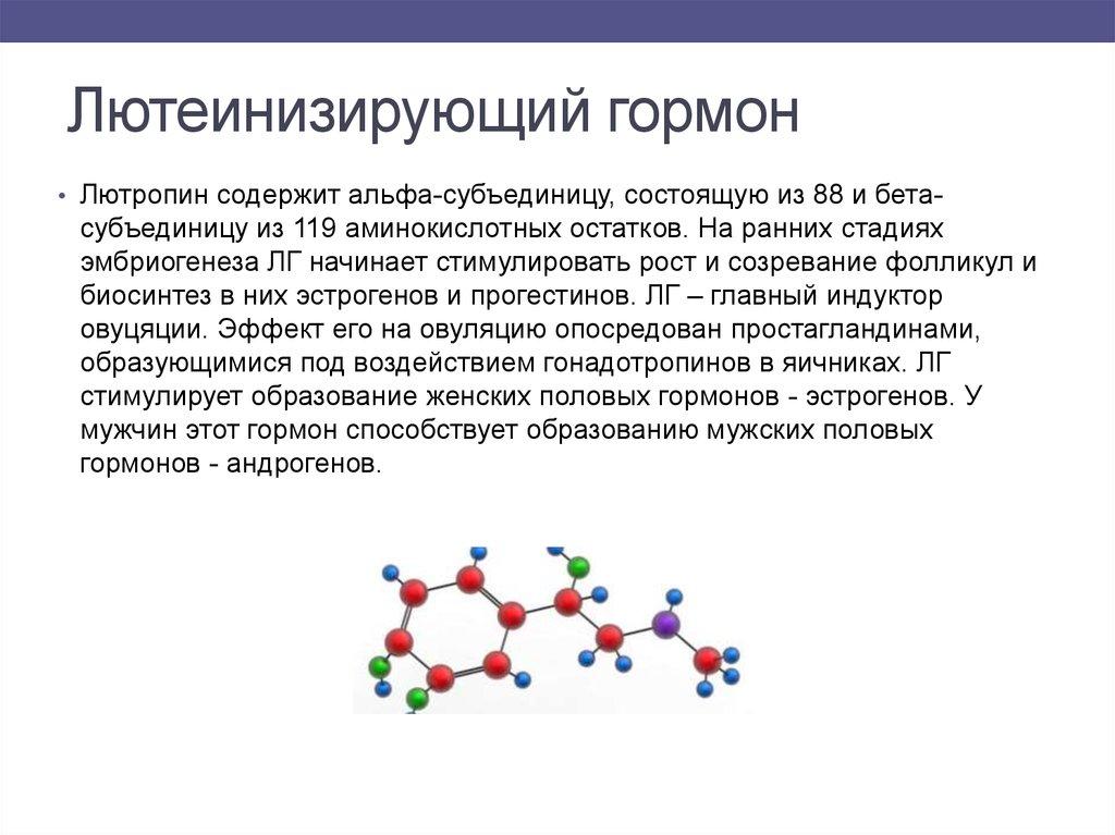 Лютеинизирующий гормон - норма у мужчин и женщин