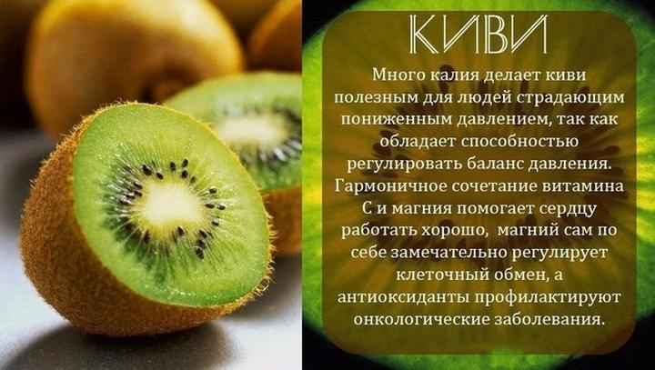 Все фрукты - описание, польза и вред, фотографии
