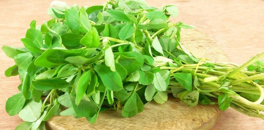 Шамбала специя, пряность - применение в кулинарии, полезные и вредные свойства | все специи