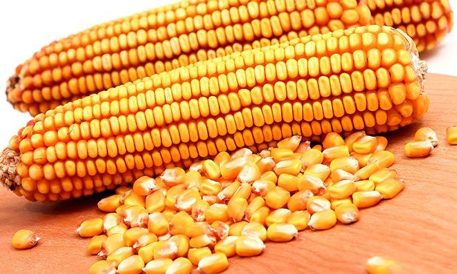 Карта кукуруза евросети: что это такое, зачем нужна и как оформить