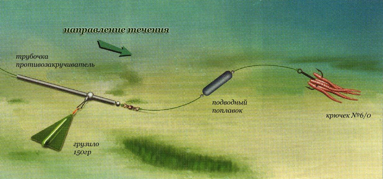 Снасть донка: особенности рыбалки на донное удилище с берега, ловля весной