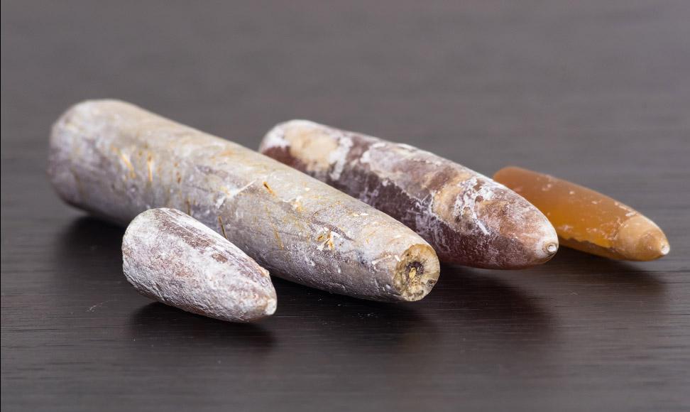Чертов палец: что это такое, лечебные свойства, применение в медицине - stonewiki.ru