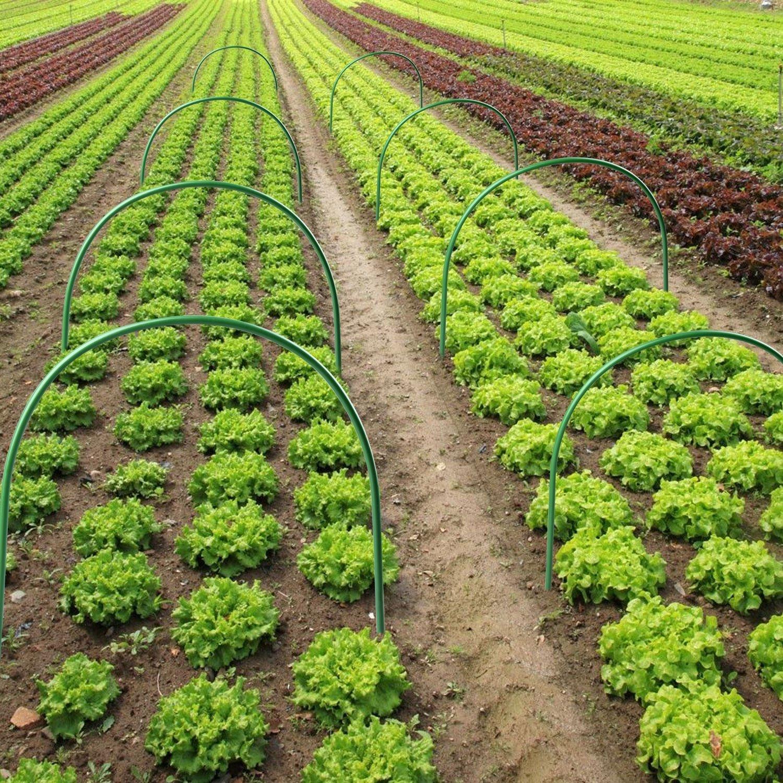 Точное земледелие: принцип работы и и перспективы — cельхозпортал