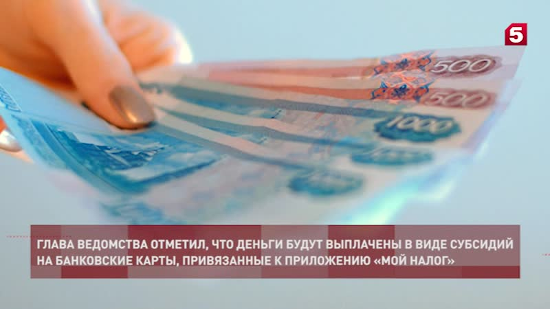 Налоговый бонус для самозанятых, как получить и использовать субсидию от государства плательщикам нпд?