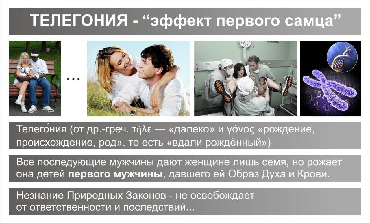 Телегония в свете науки | милосердие.ru