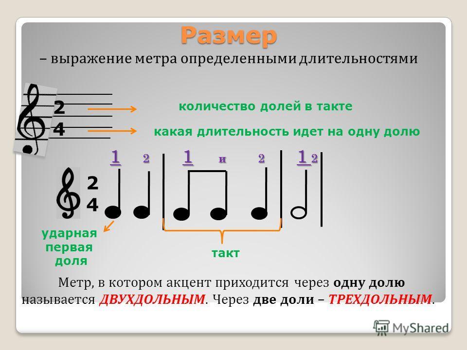 Значение слова «метр» в 10 онлайн словарях даль, ожегов, ефремова и др. - glosum.ru