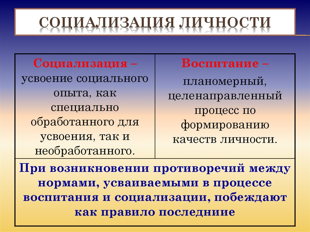 Социализация личности – это что: виды, этапы и условия социализации