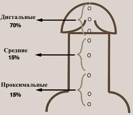 Гипоспадия у мальчиков: операция на головчатую патологию, венечная форма, фото у мальчиков