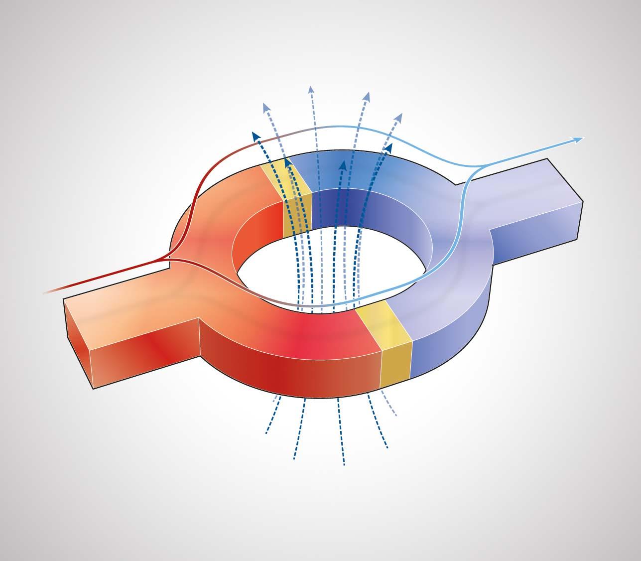 Природный магнетизм человека: как проявляется и как развить?