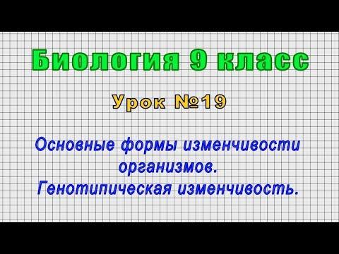 Норма ph (рн) мочи: кислотность 5,0 и щелочная реакция – что это значит?