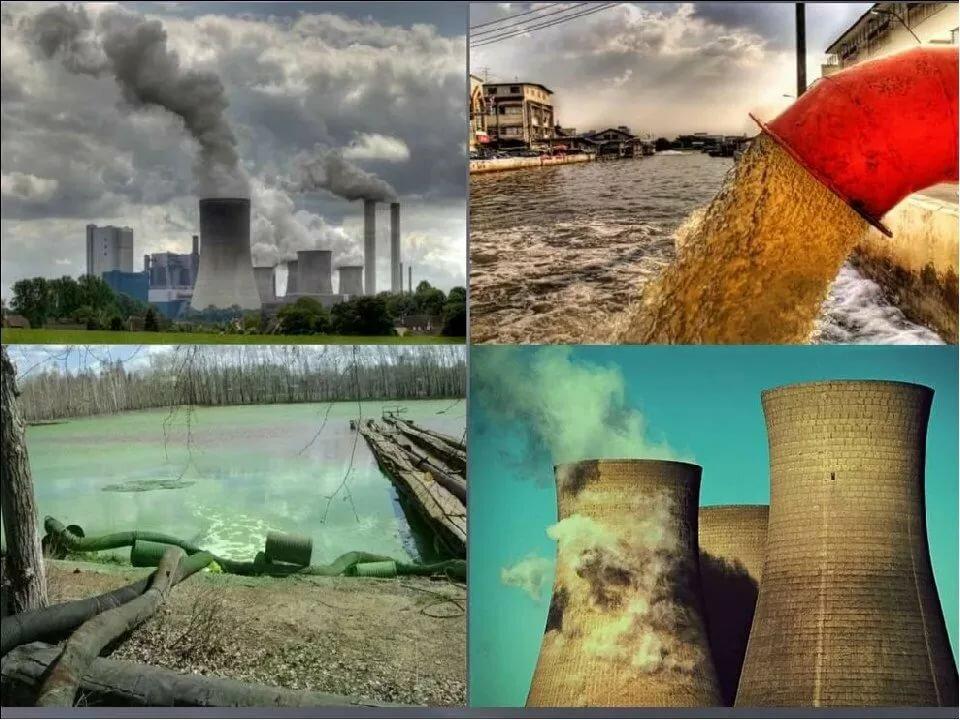 Загрязнение окружающей среды: виды загрязнения природы
