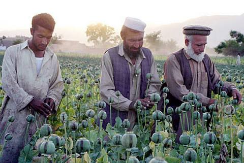 Опиум народа — википедия. что такое опиум народа