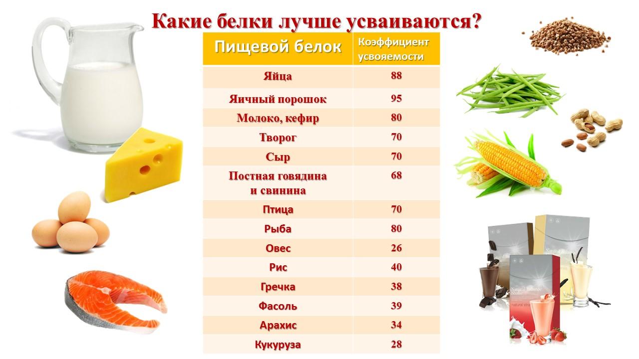 Для чего нужен и какой эффект можно получить от приема протеина