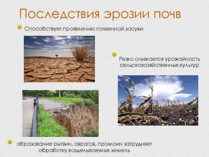 Эрозия почвы: что это такое, прчины, виды и последствия
