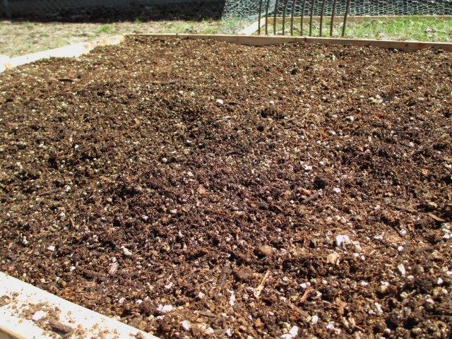 Перлит или вермикулит: что лучше использовать для растений