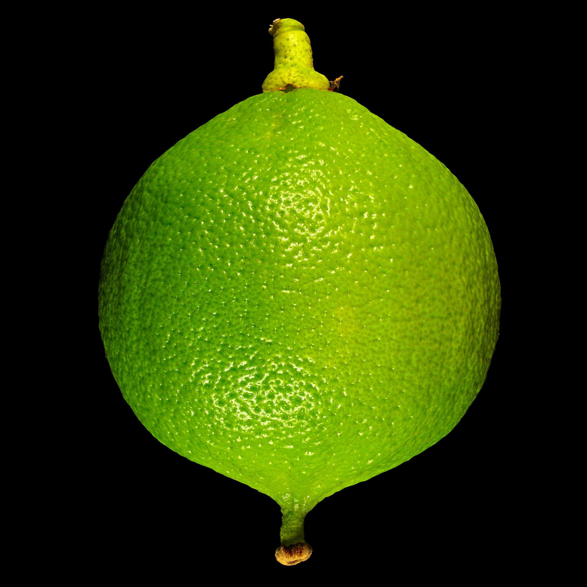 Что представляет собой бергамот и как применяют это растение