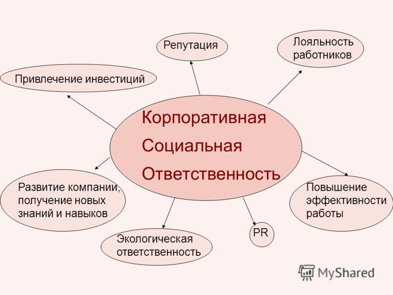 История развития ячеек ксо