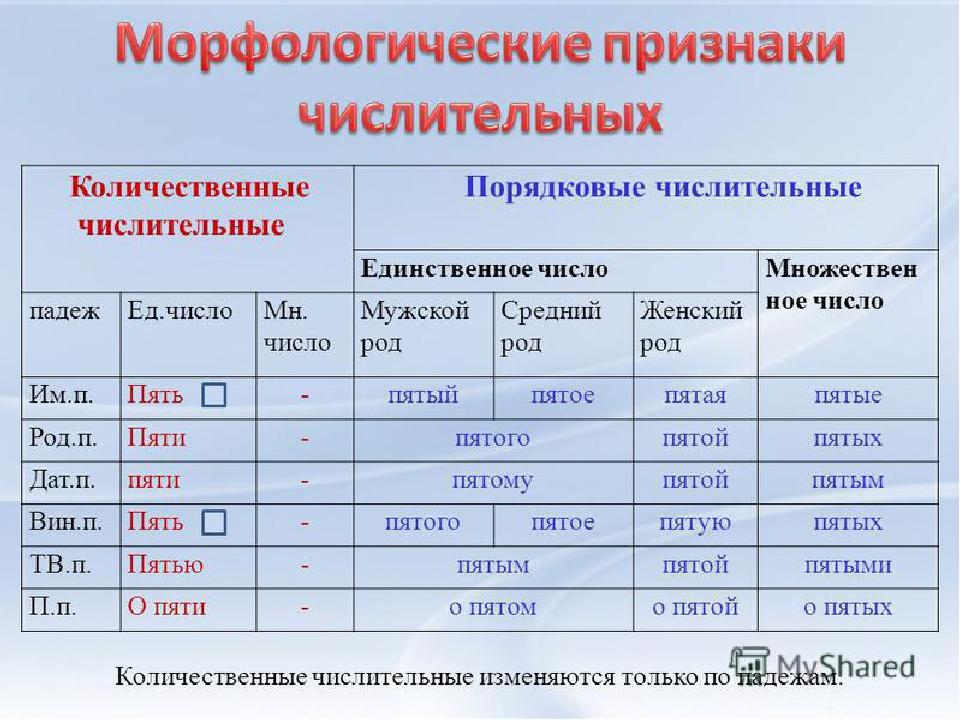 Что такое имя числительное в русском языке?