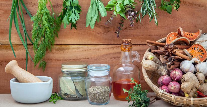 Народные рецепты лечения чистотелом различных заболеваний
