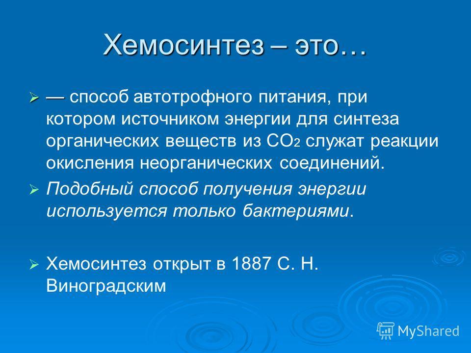 Бактерии хемосинтезирующие: примеры. роль хемосинтезирующих бактерий