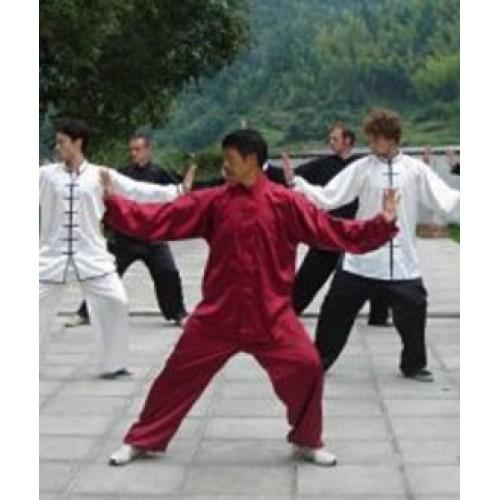 Кунг-фу (ушу) – китайские боевые искусства
