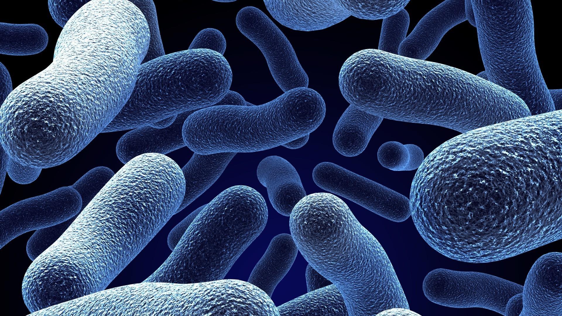 Что такое инфекция: определение, особенности и виды